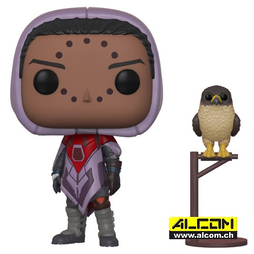 Figur: Funko POP! Destiny - Hawthorne with Hawk (9 cm)