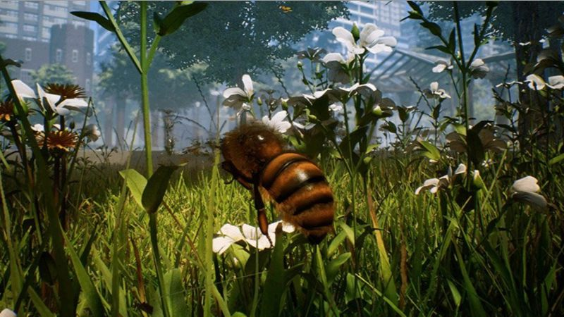 Bee Simulator (Xbox One)